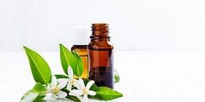 Aromathérapie : les avantages de l'huile essentielle néroli pour la santé